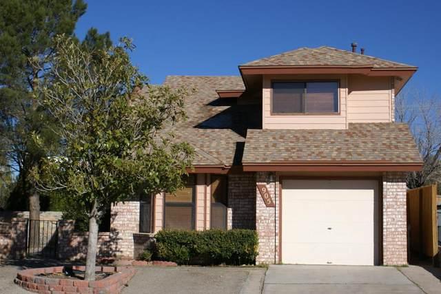 905 Centennial Drive, El Paso, TX 79912 (MLS #837197) :: The Purple House Real Estate Group