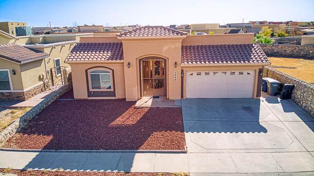 3040 Stormy Point Drive, El Paso, TX 79938 (MLS #837260) :: The Matt Rice Group