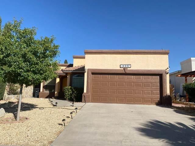 14237 Desert Sage Drive, Horizon City, TX 79928 (MLS #837266) :: The Purple House Real Estate Group