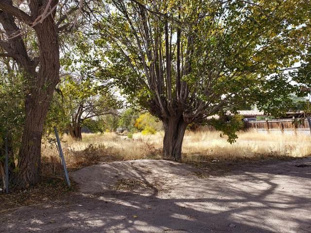 10130 Conquistador Drive, Socorro, TX 79927 (MLS #837427) :: The Matt Rice Group