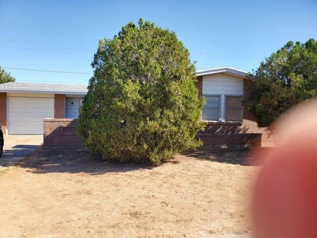 10464 Ponderosa Street, El Paso, TX 79924 (MLS #837466) :: The Matt Rice Group