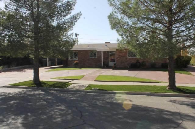 556 San Saba Road, El Paso, TX 79912 (MLS #837501) :: The Purple House Real Estate Group