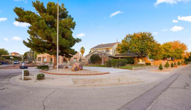 12221 Roberta Lynne Drive, El Paso, TX 79936 (MLS #837539) :: Preferred Closing Specialists
