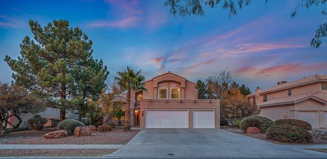 629 Rosinante Road, El Paso, TX 79922 (MLS #837559) :: The Purple House Real Estate Group