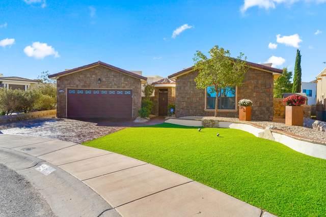 13404 Emerald Pond Drive, Horizon City, TX 79928 (MLS #837573) :: The Purple House Real Estate Group
