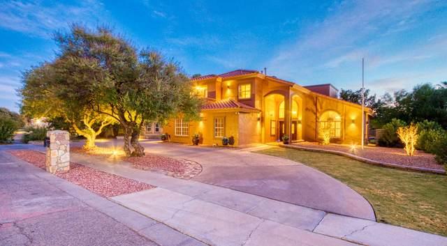 708 Rosinante Road, El Paso, TX 79922 (MLS #837590) :: The Purple House Real Estate Group