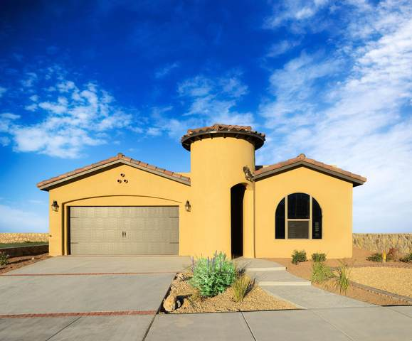 7327 Bobcat Hallow Drive, El Paso, TX 79912 (MLS #837690) :: Preferred Closing Specialists