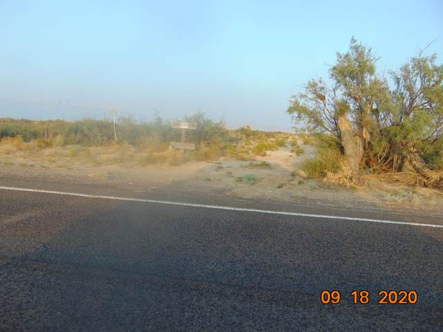 TBD Chiquita Farms Lot 46, Dell City, TX 79837 (MLS #837879) :: Preferred Closing Specialists