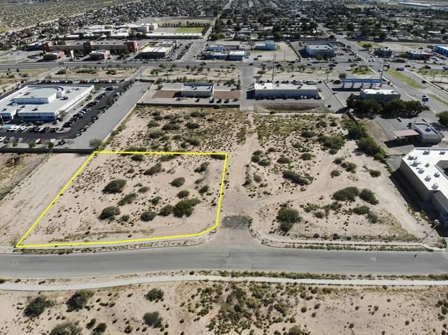14520 Bill Newkirk Way, Horizon City, TX 79928 (MLS #837942) :: The Purple House Real Estate Group