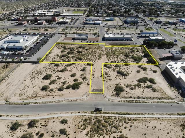 14510 Bill Newkirk Way, Horizon City, TX 79928 (MLS #837945) :: The Purple House Real Estate Group