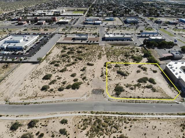 14500 Bill Newkirk Way, Horizon City, TX 79928 (MLS #837946) :: The Purple House Real Estate Group