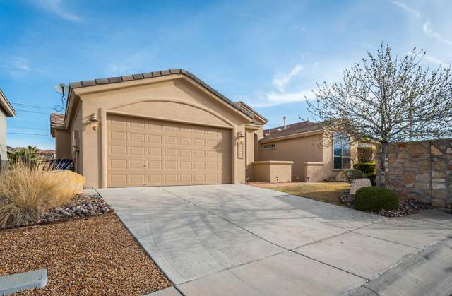 12297 Sitting Bull Drive, El Paso, TX 79936 (MLS #837962) :: The Purple House Real Estate Group