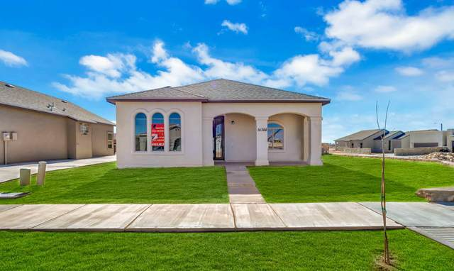14360 Nick Drahos Lane, Horizon City, TX 79928 (MLS #837970) :: The Purple House Real Estate Group