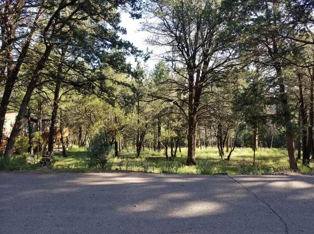 301 Swallow Place, Ruidoso, NM 88345 (MLS #837976) :: The Purple House Real Estate Group