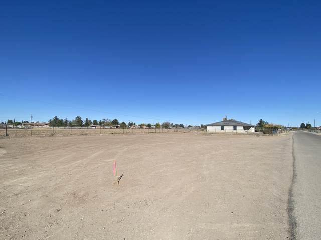 534 Lisa Diane Road, Socorro, TX 79927 (MLS #838023) :: The Purple House Real Estate Group
