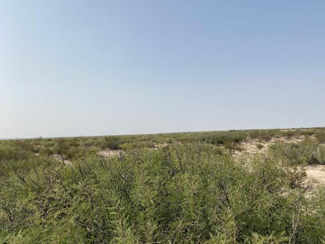 67 TSP1 1 Sec 9 T&P Lot 10, Dell City, TX 79837 (MLS #838063) :: The Purple House Real Estate Group