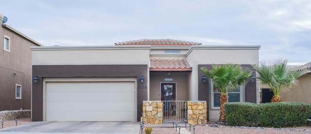 3136 Blue Dirt Circle, El Paso, TX 79938 (MLS #838080) :: The Purple House Real Estate Group