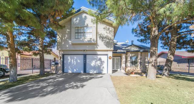 11305 Lake Oneida Court, El Paso, TX 79936 (MLS #838109) :: The Purple House Real Estate Group
