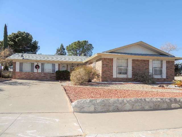 3013 Hector Drive, El Paso, TX 79935 (MLS #838363) :: The Purple House Real Estate Group