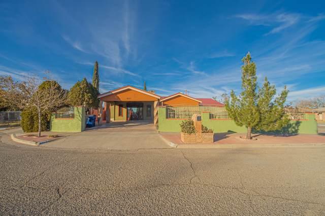 6257 Mamba Court, El Paso, TX 79924 (MLS #838438) :: Preferred Closing Specialists