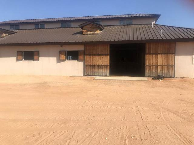 5199 Buffalo Creek Drive, El Paso, TX 79938 (MLS #838541) :: Jackie Stevens Real Estate Group brokered by eXp Realty
