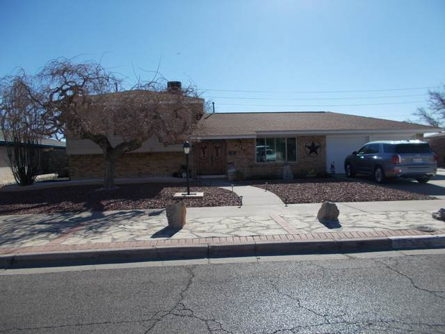 9200 El Dorado Drive, El Paso, TX 79925 (MLS #838551) :: The Purple House Real Estate Group