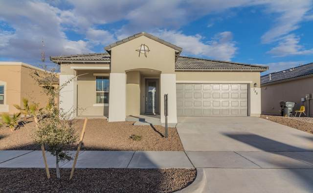 12249 Desert Dove, El Paso, TX 79938 (MLS #838605) :: The Purple House Real Estate Group