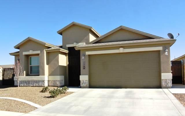 1134 Sylvia Aguilar Street, El Paso, TX 79928 (MLS #838642) :: The Purple House Real Estate Group