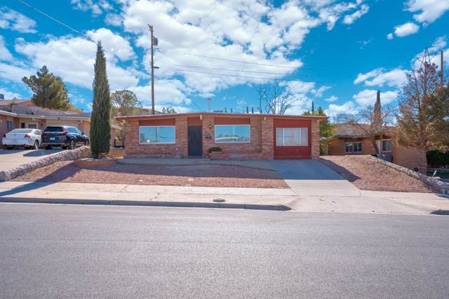 316 Mardi Gras Drive, El Paso, TX 79912 (MLS #838647) :: The Purple House Real Estate Group