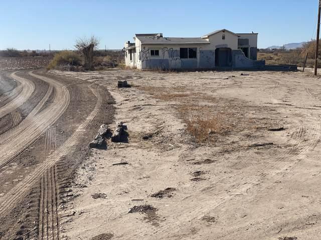 780 Thompson Road, San Elizario, TX 79849 (MLS #838665) :: The Purple House Real Estate Group