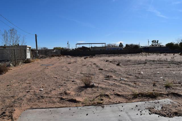 15032 Mccracken Drive, El Paso, TX 79938 (MLS #838711) :: The Purple House Real Estate Group