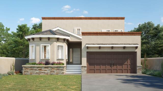 657 W La Entrada Circle, Sunland Park, NM 88063 (MLS #838799) :: The Purple House Real Estate Group
