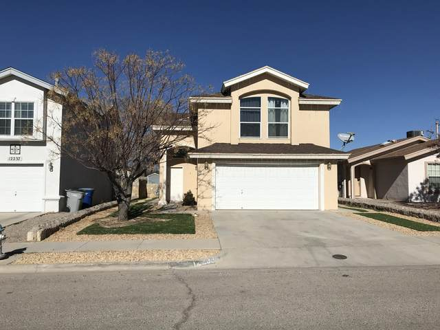 12239 Saint Mark Avenue, El Paso, TX 79936 (MLS #838853) :: The Purple House Real Estate Group