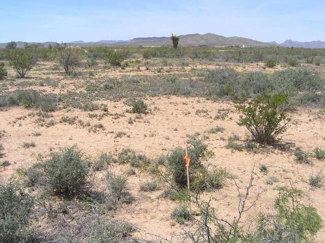 0 Bonita Vista, Sierra Blanca, TX 79851 (MLS #838859) :: Jackie Stevens Real Estate Group brokered by eXp Realty