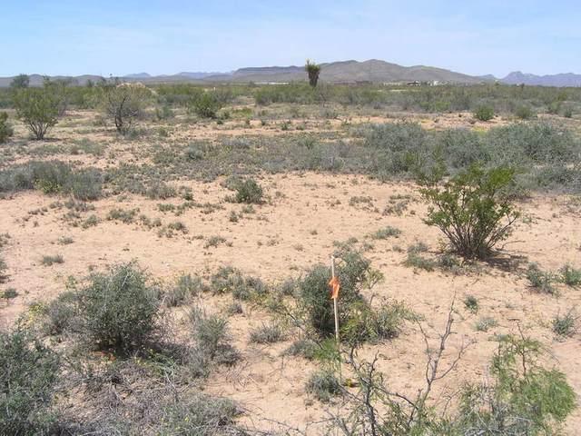 10 Rancho Verde #9B, Sierra Blanca, TX 79851 (MLS #838861) :: Jackie Stevens Real Estate Group brokered by eXp Realty