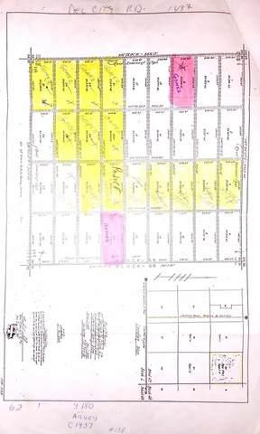 20 Vista Heights #3, Sierra Blanca, TX 79851 (MLS #838865) :: Summus Realty