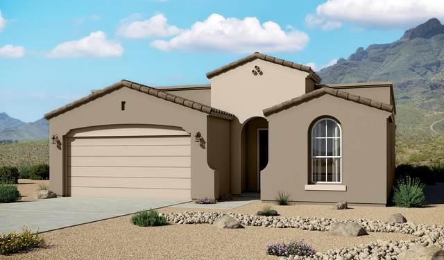 237 Emerald Sun Drive, El Paso, TX 79928 (MLS #838917) :: Preferred Closing Specialists
