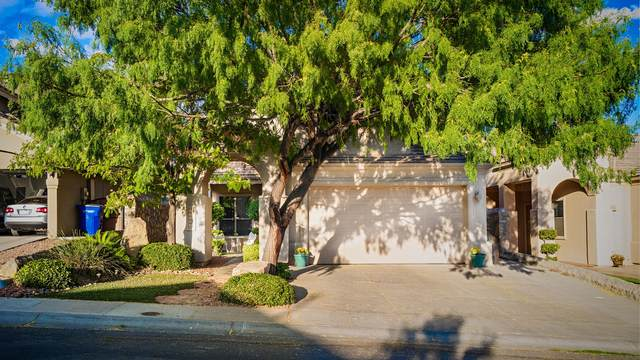 12164 Sitting Bull Dr, El Paso, TX 79936 (MLS #838978) :: The Purple House Real Estate Group