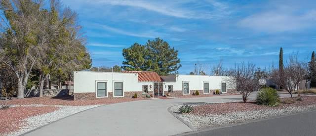 4726 Rosinante Road, El Paso, TX 79922 (MLS #839157) :: The Purple House Real Estate Group