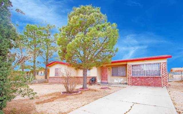627 Fall River Road, El Paso, TX 79907 (MLS #839215) :: The Purple House Real Estate Group