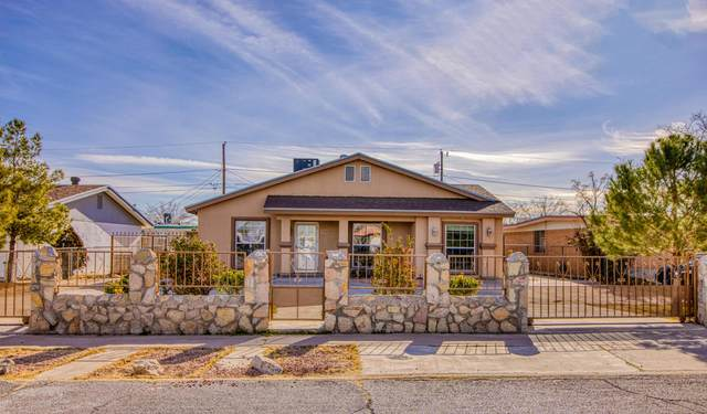 328 Petty Lane, El Paso, TX 79907 (MLS #839295) :: The Purple House Real Estate Group