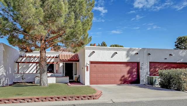 114 Casas Bellas, Santa Teresa, NM 88008 (MLS #839305) :: The Purple House Real Estate Group