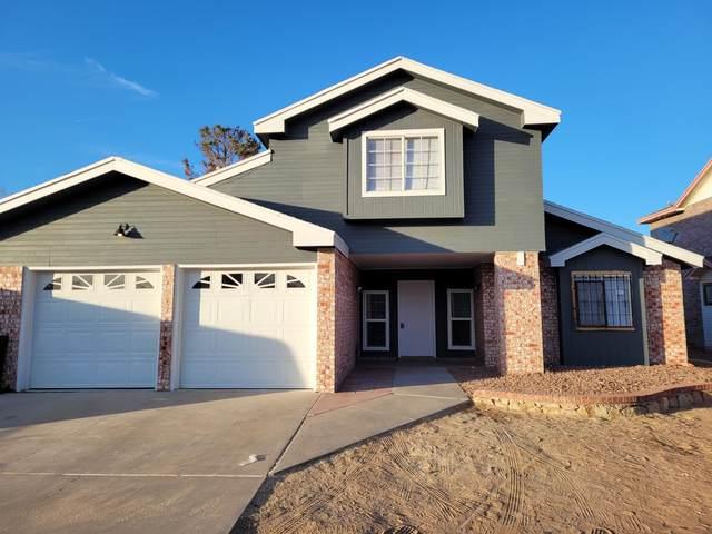 11441 Lake Alice Drive, El Paso, TX 79936 (MLS #839322) :: The Purple House Real Estate Group