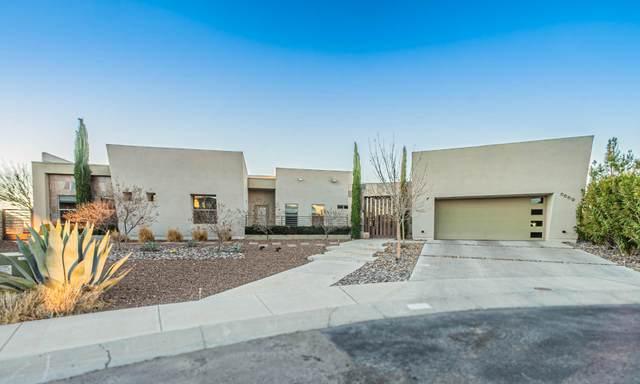 6669 Tuscany Ridge Drive, El Paso, TX 79912 (MLS #839324) :: The Purple House Real Estate Group