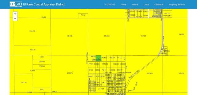 1 Gunsmoke, Unincorporated, TX 99999 (MLS #839393) :: The Purple House Real Estate Group