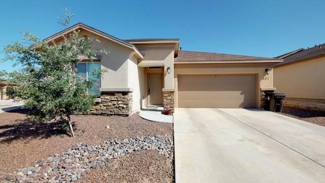 851 Blue Park Avenue, Santa Teresa, NM 88008 (MLS #839424) :: The Purple House Real Estate Group