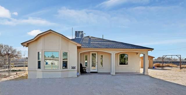 339 Innsbruck Avenue, Socorro, TX 79927 (MLS #839433) :: The Purple House Real Estate Group