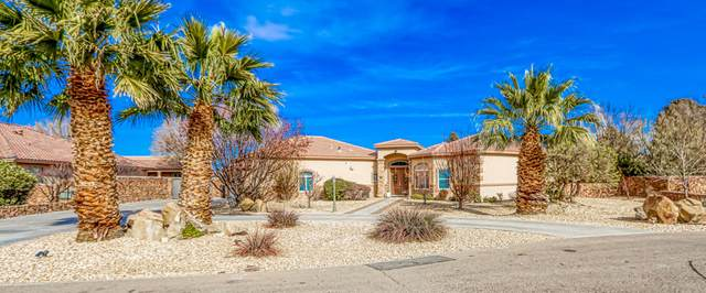 732 Emerald View Drive, El Paso, TX 79932 (MLS #839481) :: The Purple House Real Estate Group
