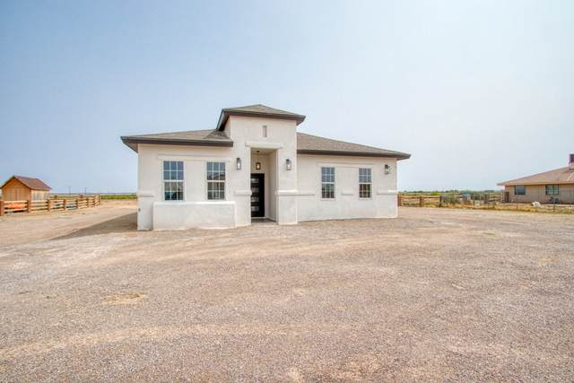 13819 Janelle Lynne Circle, San Elizario, TX 79849 (MLS #839515) :: The Purple House Real Estate Group