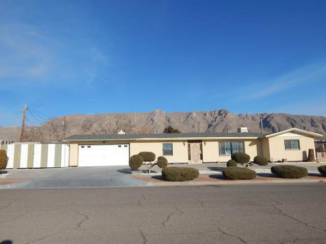 110 Puma Circle, El Paso, TX 79912 (MLS #839534) :: Preferred Closing Specialists